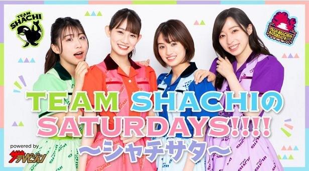 7月31日より始まるニコニコチャンネル「TEAM SHACHIのSATURDAYS!!!! ~シャチサタ~」